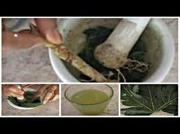 Ramuan Herbal Obat ISPA